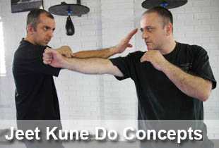 jeet_kune_do_concepts