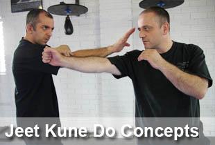 jeet_kune_do_concepts